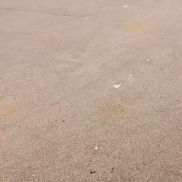 Shorts & light clip by Serj Matt @serj_matt – Раскривушка😒😓 Раскатываюсь,вспоминаю че и как) 📹 @anton__kamaev #pridestreet #psbikes #psmainframe #psimpulse #psatlas #clean #style #steez #balance #control #riders #riderschannel #mtbstreet #mtb26 #mtbpower #mtbgrind #4pegs #street #moscow #russia #ciay #ca #vvcforce #summer #bar #barspin #cabbar #feeble