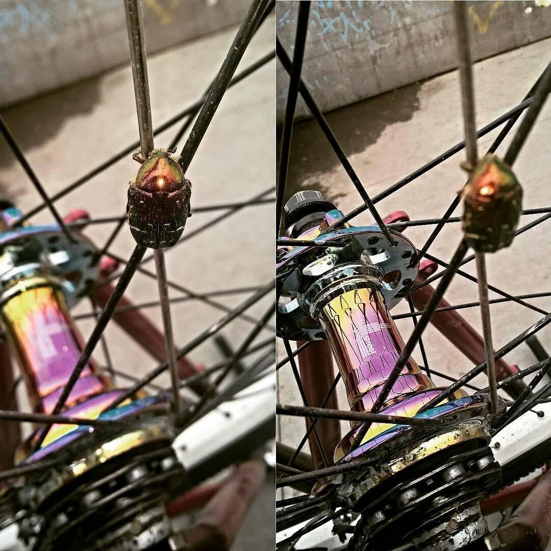 Oil brothers yo! Thanks  @viva_la_vaganza –  #PrideStreet #Mono #RearHub #oilslick #жук  #бензиновый #бензиновоепятно #маслянноепятно #маслянный #СтритПушка #стрит #жукрайдер #StreetGun #streetPUSHKA – #psbikes